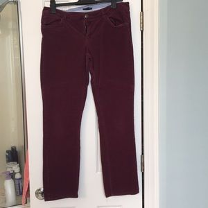 Tommy Hilfiger maroon Cords